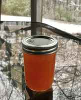 Habanero_pepper_jelly