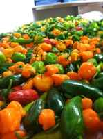 Mixed_hot_peppers
